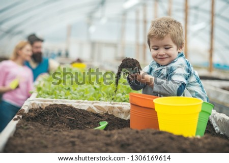 clean products. clean products industry. little boy growing clean products. clean products concept. beauty gardening #1306169614