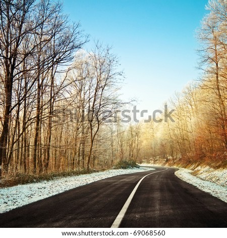 Clean road in snowy forest on a sunny winter day