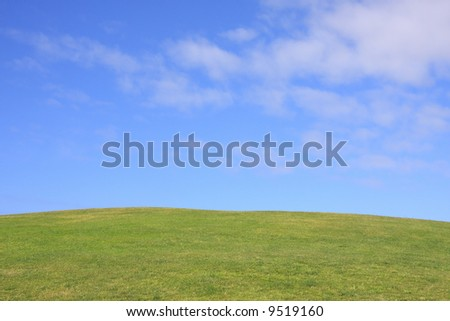 Clean summer landscape with grass and blue sky.