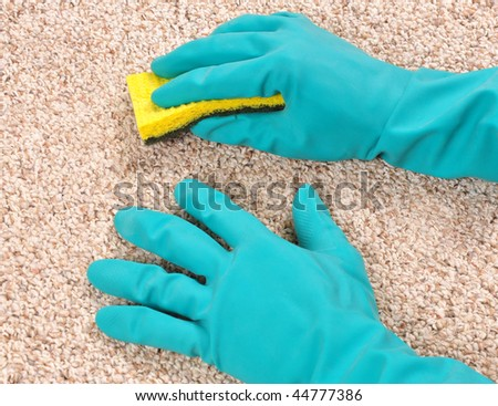 Cleaning carpet with sponge and gloves