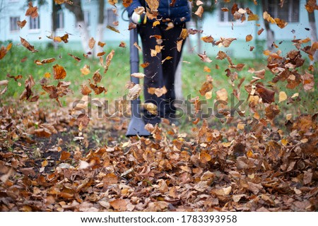 Cleaning dry leaves with a wind turbine. The gardener is cleaning the garden. Autumn cleaning of the yard. Stock photo ©