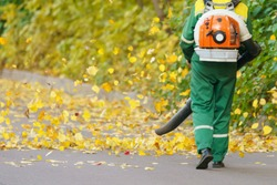 Cleaning falling leaves on a city street in the autumn dry time. Using leaf blower for cleaning of the road in the park. Seasonal occupation concept.
