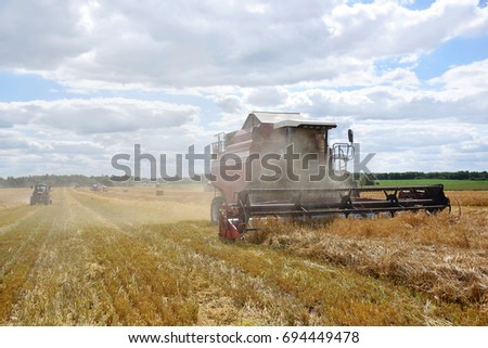 cleaning of grain crops on a large field on a summer day #694449478