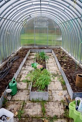 Cleaning of the greenhouse after the summer season. Old earth with the roots. Closing for the winter season