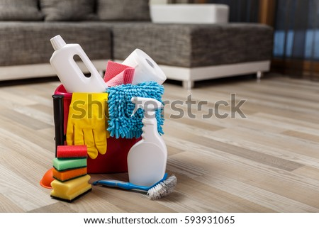 Cleaning service. Bucket with sponges, chemicals bottles and plunger. Rubber gloves and paper towel. Household equipment. #593931065