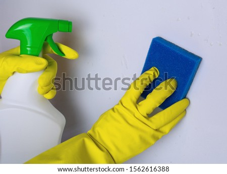 cleaning the electric stove with cleaning products in the kitchen at home. Household, household chores. Clean house, clean #1562616388