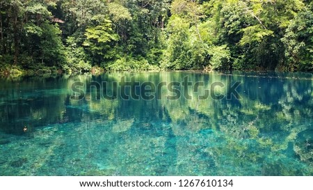 clear blue lake in the middle of rainforest