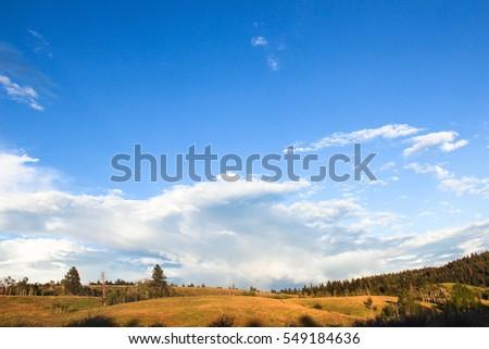 clear blue sky grass field beautiful landscape #549184636