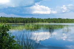Clear blue water, reeds and grass along the shore, water lilies on the water. White clouds reflect in water. Summer holidays and travels in Belarus.