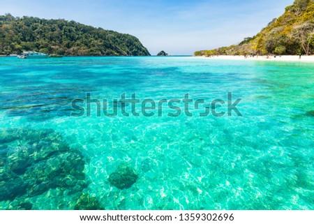 Clear emerald sea waterSurrounding the sea island with white sandy beach and blue sky at koh rok island,krabi,Thailand #1359302696