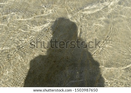 Clear shadow on clear water #1503987650