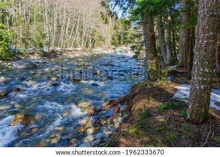Clear water flows over and by rocks in Denny Creek in Washington State. Zdjęcia stock ©