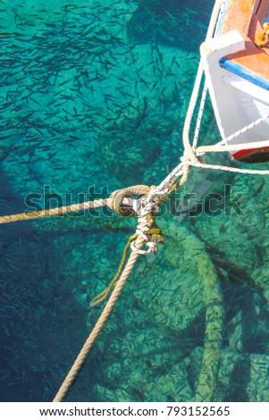 Clear waters of Santorini - Greek Islands #793152565