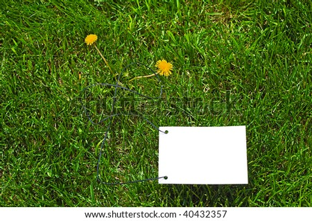 Clear white paper on green grass for text writing. Two yellow flowers there.