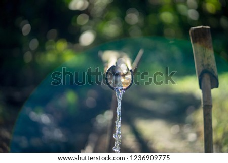 Clearly mineral water flowing from bamboo pipeline for agriculture farming , which is found in rural livelihood. Selected focus with natural rainbow flare and bokeh background.