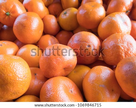 Clementines in the market as a background close-up- A pile of clementines