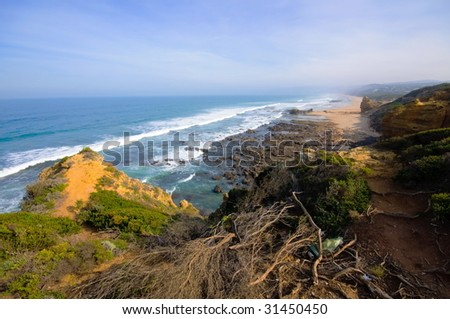 Cliff and beach along Great Ocean Drive in Australia