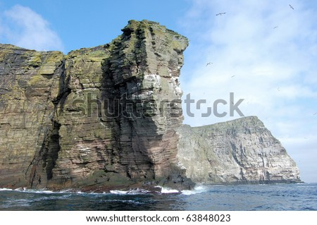 Cliff at Bressay Island near Lerwick, Shetland Islands, Scotland, UK.