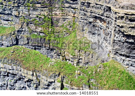 Cliff face of the Cliffs of Moher in Ireland