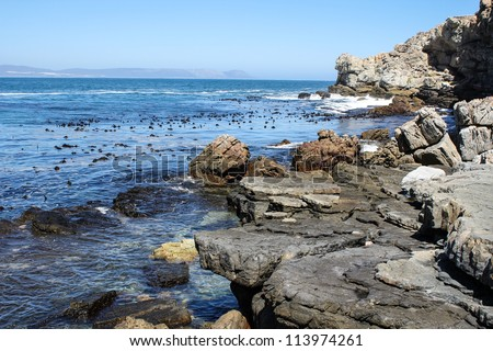 Cliffs along south africas coastline at the indian ocean