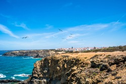 Cliffs by the Atlantic Ocean with seagulls flying overhead and with the village of Zambujeira do Mar in the background, Vicentine Coast Natural Park, Odemira PORTUGAL