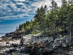 Cliffs on Great Head Trail, Mount Desert Island, Maine