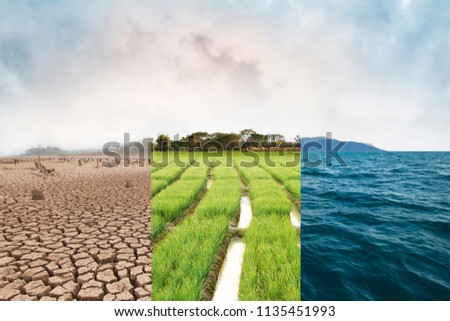 Climate change, compare image with Drought, Green field and Ocean metaphor Nature disaster, World climate and Environment, Ecology system. #1135451993