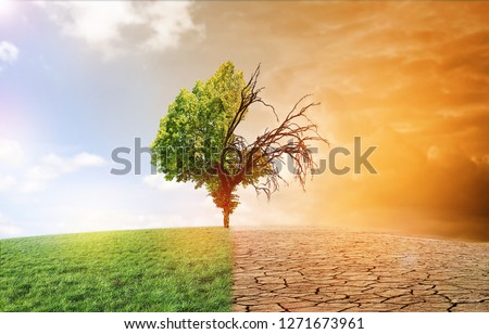 climate change dying earth Stock foto ©