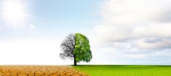 Climate change from drought to green growth