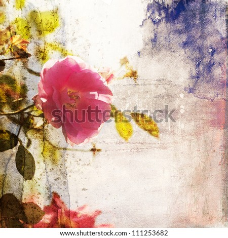climbing rose with an attractive painted grunge texture