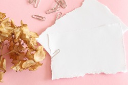 clipped torn blank paper sheets and dry flower on pink background