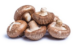 clipping path Shiitake mushrooms isolated on white background