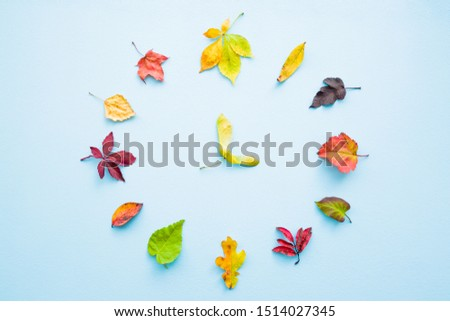 Clock created from colorful different autumn leaves on pastel blue background. Time change concept.