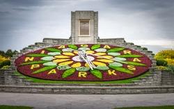 clock flower of Niagara Park, Niagara Falls, Ontario, Canada