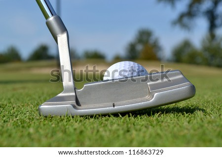 close of putter and golf ball on green