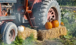 Close up a farmer's tractor displays an autumn bounty in countryside. A tractor decorated with hay and pumpkins for Thanksgiving Day and Halloween Festival. Street photo, selective focus, travel photo