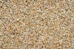 Close-up abstract view of sand texture made from broken shells and coral on a tropical beach