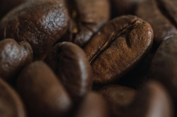 Close-up and detail of Mexican coffee beans, its rounded shape and smooth and rough texture are distinguished