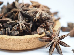 Close up and selective focus Kembang Lawang or Illicium verum a medium-sized evergreen tree native to northeast Vietnam and southwest China. A spice commonly called star anise, staranise, star anise