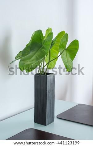 Free Photos Close Up Artificial Green Leaf Bush In White Ceramic