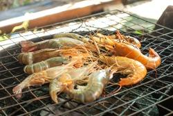 Close up B-B-Q Lots of burn shrimp on a charcoal stove gridiron- street foods