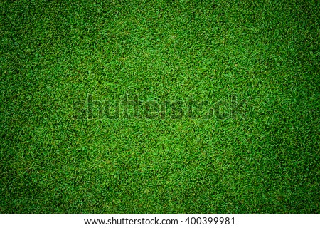 close up background of beautiful green grass pattern from golf course at sunset time