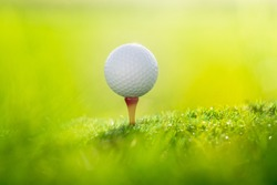 Close up ball on the green grass background