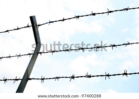 close up Barbed wire Fence and clear sky