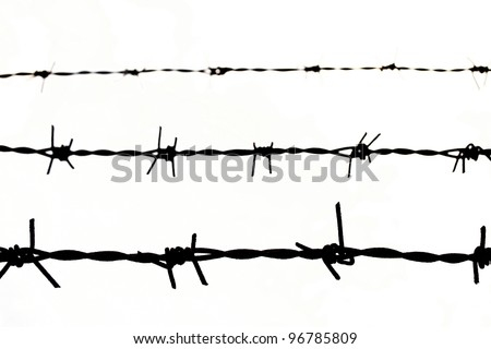 close up Barbed wire Fence on white background