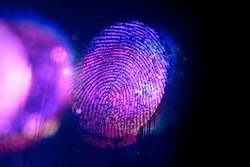 Close up beautiful abstract violet, red colored fingerprint on  background texture for design. Macro photography view.