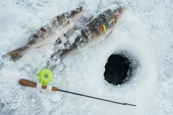 close-up boer, fishing rod and fish around the ice-hole on the winter river in a sunny day