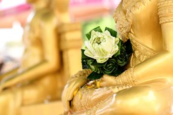 Close up Buddha statue with raw of Brass Hand of buddha image holding Lotus on the lap of buddha. Believe, Culture of Asia, Traditional. Buddhist believe, Calm, meditation concept.