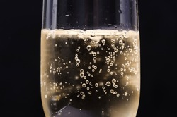 Close up Champagne bubble in glass on black background
