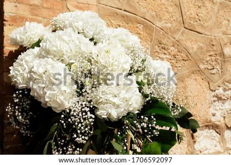 Close up chrysanthemum white flower for wedding Foto stock ©